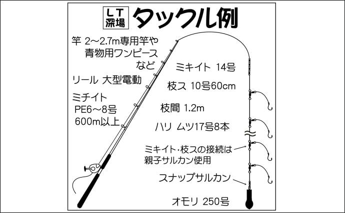 【相模湾2020春】最新釣果で解説:LT(ライトタックル)深場釣り