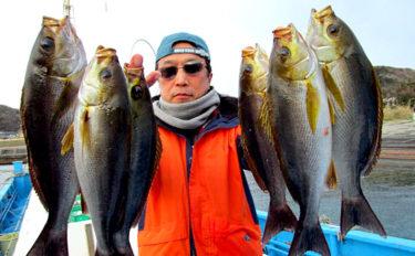 【南房総2020春】開幕したてのイサキ釣り解説 タックルから釣り方まで