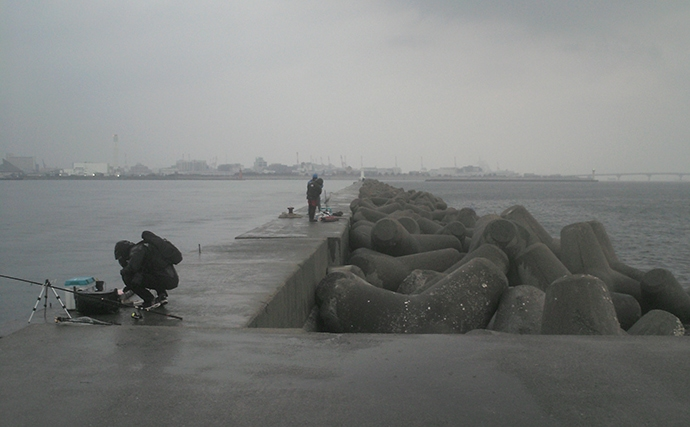 チヌ乗っ込みシーズン開幕か テトラの前打ちで46cm【和田防波堤】