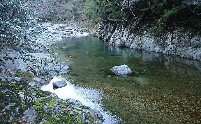 渓流ルアー釣行で天然アマゴ13~20cm7匹キャッチ【奈良・十津川村】