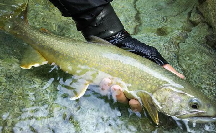 最高難易度かつ最もマニアックな『源流釣り』とは 釣り方と歩き方を解説