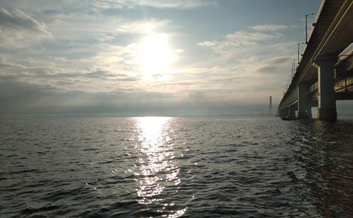 ボートカレイ釣りで40cm頭にマコガレイ2尾手中【関西空港連絡橋下】