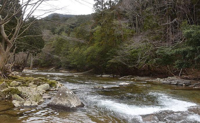 解禁当日の渓流釣りで美アマゴ7尾 イクラの刺し方がキモ【兵庫・黒川】