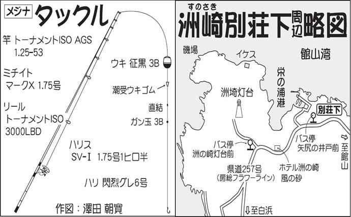 磯フカセ釣りで43cm1.3㎏美形口太グレ手中【千葉・洲崎別荘下】
