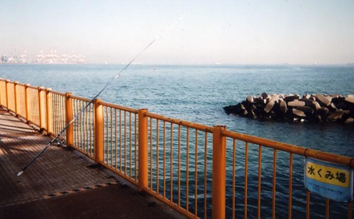 「晩酌の肴」狙いのミャク釣りでウミタナゴ&シロギス【磯子海づり施設】