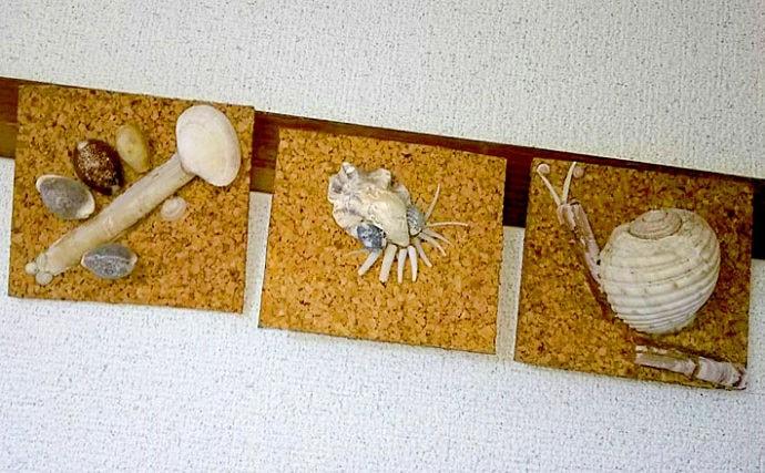 自宅生活をちょっと楽しく:親子で楽しめるビーチコーミング&貝殻アート