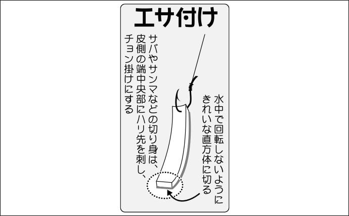 【東京湾2020】シーズンインの船カサゴ釣り解説 タックル・エサ・釣り方