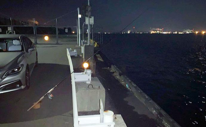 春の陸っぱり夜釣り堪能 ウキ釣りで86cmスズキに前打ちでアオハタ