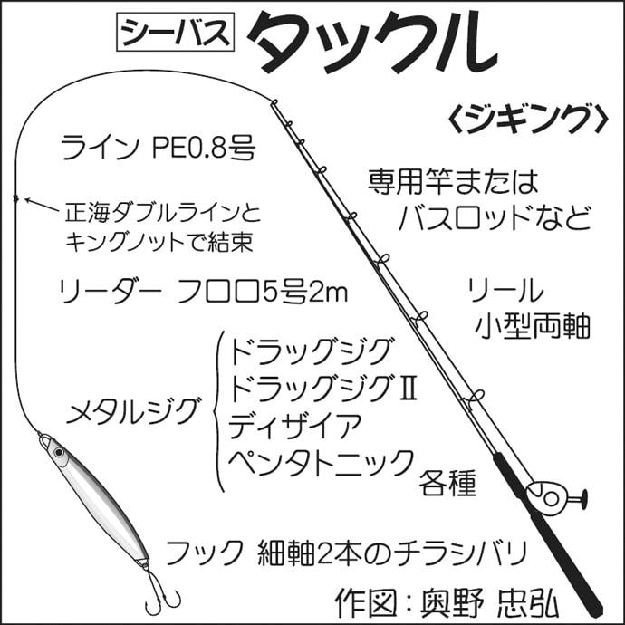東京湾ボートシーバスゲーム 初心者でも1投目から本命手中【林遊船】