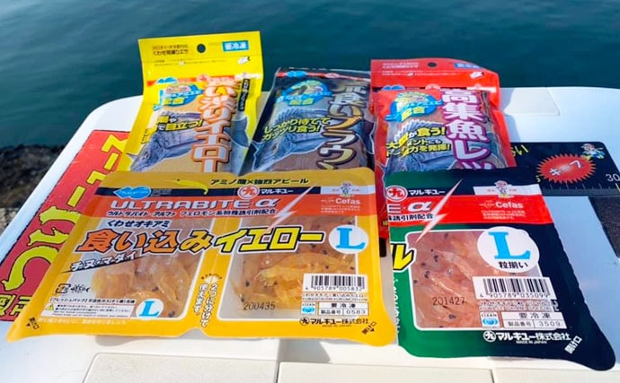 陸っぱりフカセ釣りで47cm浮上 潮変わりでヒット【神奈川・浦賀】
