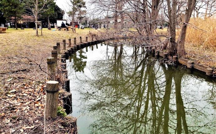 手軽に楽しい淡水小物釣行 タナゴ24尾を手中【東京・水元公園】