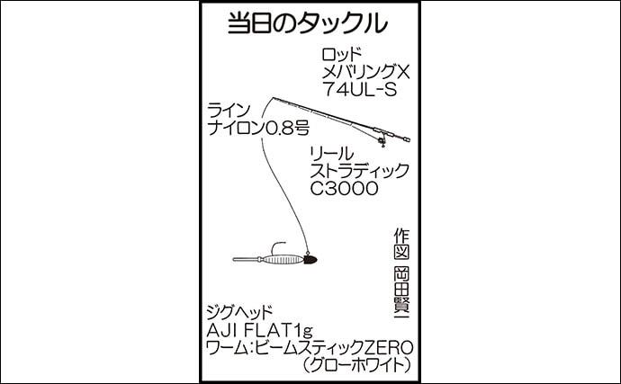 家族連れでライトロックゲーム 足元から20cm超アラカブ【大分】