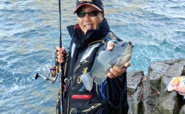 磯フカセ釣りでクロ苦戦 急遽カサゴにヒラスズキ釣りへ【長崎・上五島】