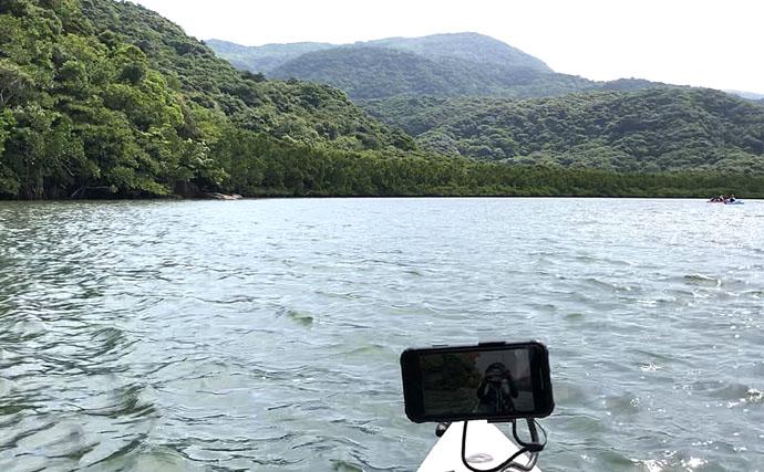 マングローブ林で南国情緒あふれるカヤックフィッシングを満喫【西表島】