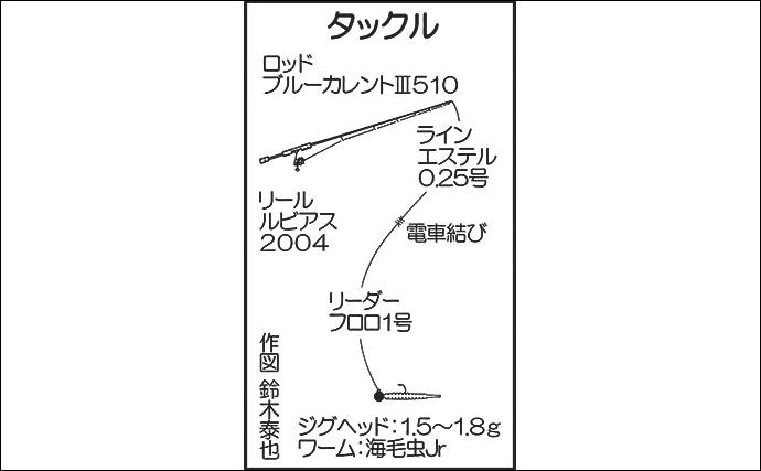 夕マヅメのアジングゲームで24cm頭に良型中心釣果【新宮漁港】