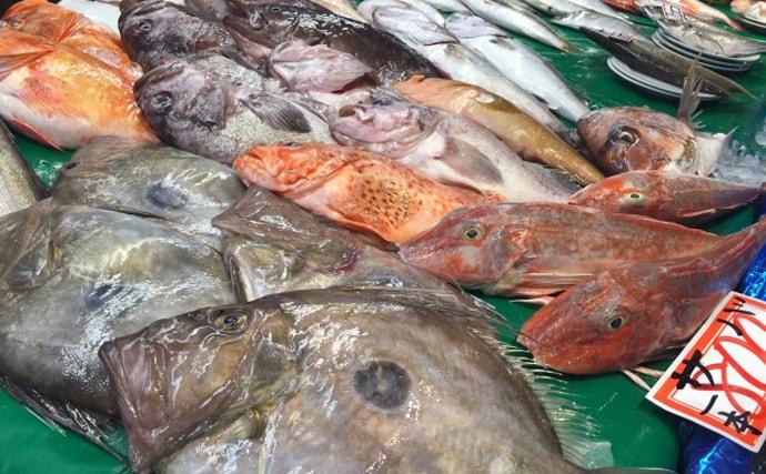 漁師が「本当に食べてもらいたい」サカナ『プライドフィッシュ』とは