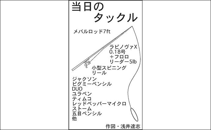 トップウォーターシーバスゲームでセイゴ連発キャッチ【三重・四日市港】
