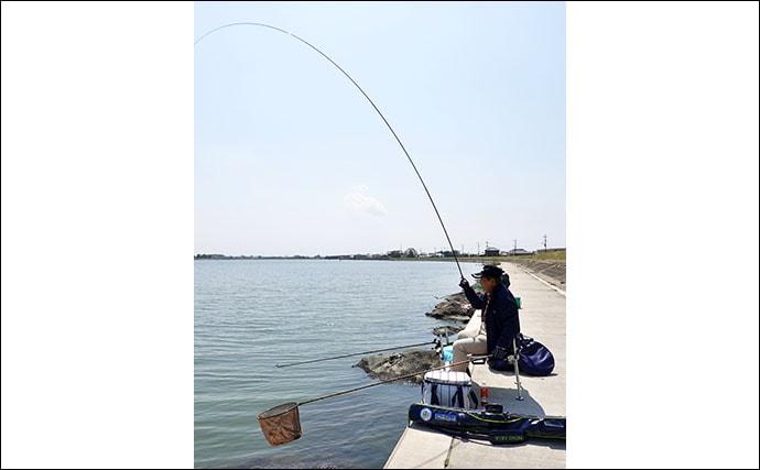 今週のヘラブナ推薦釣り場【茨城県・鰐川】