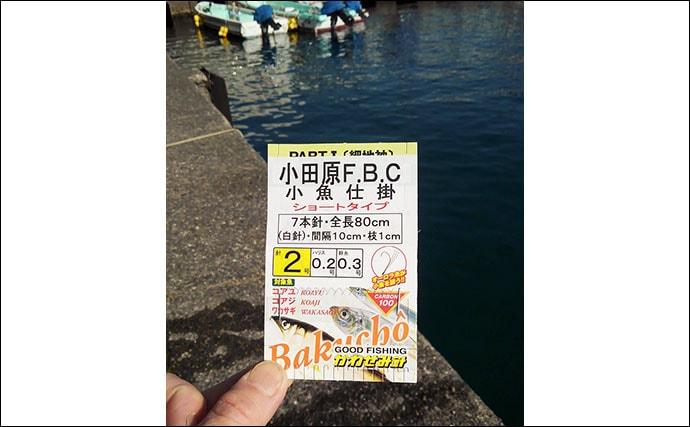 陸っぱりサビキ釣りで小物と戯れる 気温上昇の今後に期待【早川港】