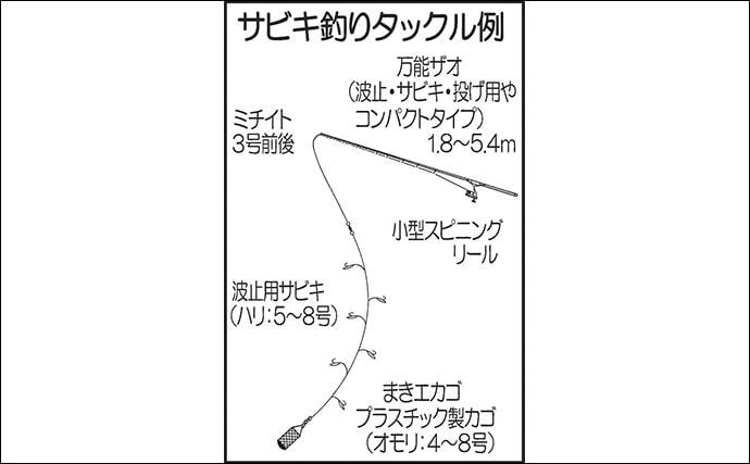 【九州2020初夏】波止での『サビキ』&『ウキ』釣り入門 お手軽&簡単