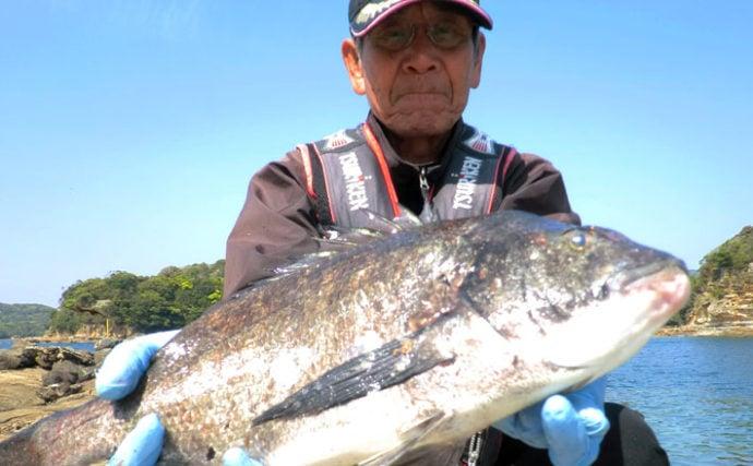 磯フカセ釣りで狙う乗っ込みチヌ 50cm頭に続々【長崎・南九十九島】