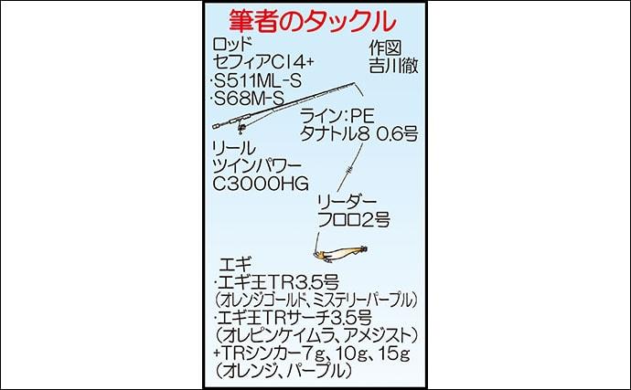 ティップランエギングで1.3kgアオリ ラトル音の効果?【Wingar】