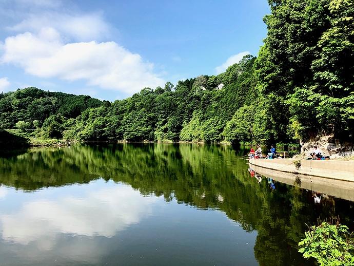 ヘラブナ推薦釣り場【奈良県・布目ダム】 放流もあり濃い魚影が魅力