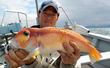 【東海2020】人気急上昇アマダイ釣り テンビン&タイラバ釣法を解説
