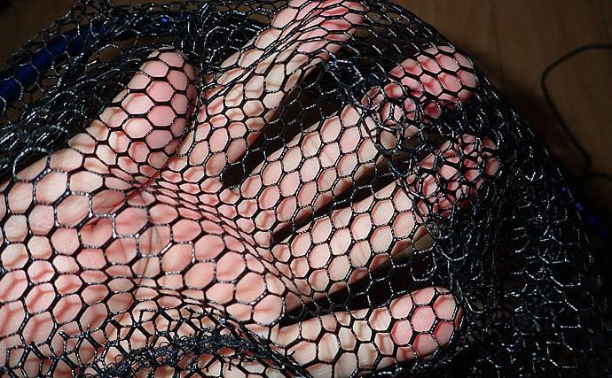釣行グッズ選び方ガイド:タモ リリース前提ならラバーネットがオススメ