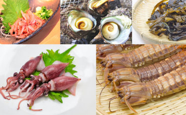 【東日本編】4月に旬を迎える海の幸5選 ワカメ生産量1位は岩手県