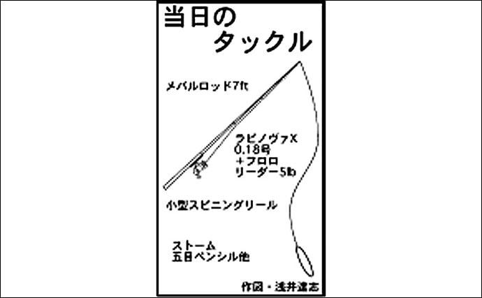表層にいる良型メバルをトップゲームで狙い撃ち 23cmキャッチ【三重】