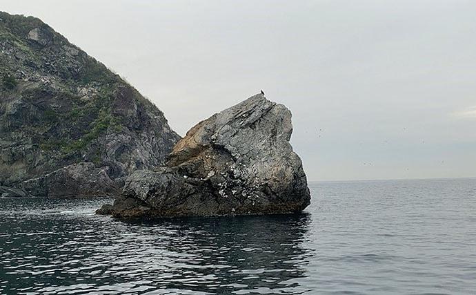 磯フカセで乗っ込みマダイ&チヌ 潮流れるタイミングで手中【淡路島】