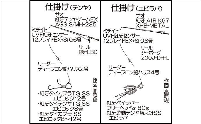 乗っ込みマダイ狙いテンヤ&タイラバゲームで大型浮上【福岡・木鶏丸】