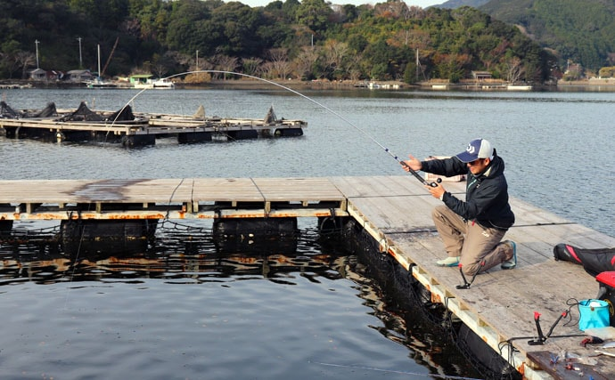 海上釣堀で『シマアジ』を狙って釣る方法 落ちてくるエサに好反応