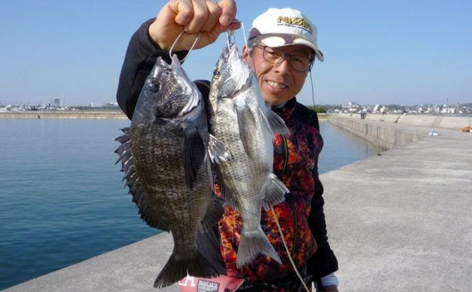 紀州釣りで30cm台クロダイ複数手中 ボラがチャンスの合図?【常滑港】