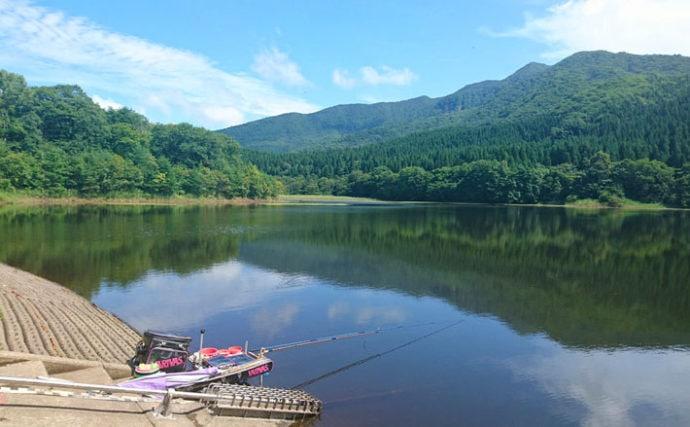 ヘラブナ釣り回想記:山形県 カワウの食害少なく抜群の魚影が魅力