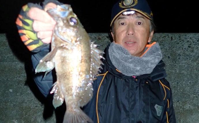 電気ウキで狙う夜のメバル釣り エサのローテでアタリ継続【大田尾漁港】