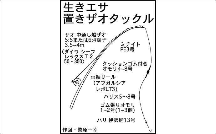 【2020】海上釣堀の『青物』攻略法5選 チャンスタイムを狙い撃ち