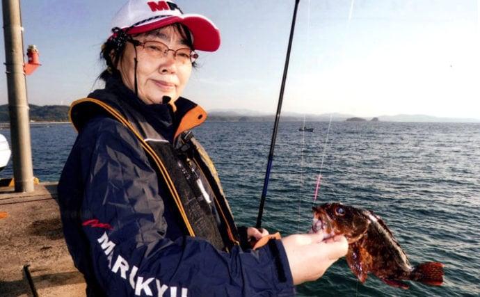 波止からのちょい投げ釣りで27cm級の大アラカブをキャッチ【久津漁港】