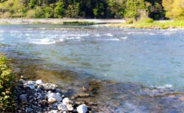 【2020】アユのトモ釣りオススメ河川:桂川 本支流ともに好場所あり