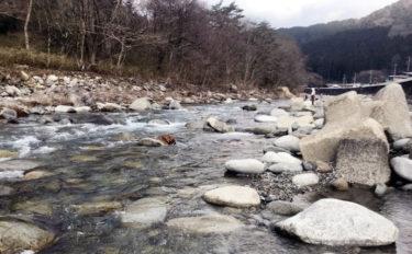 【2020】アユのトモ釣りオススメ河川:大芦川 利き鮎グランプリ準優勝