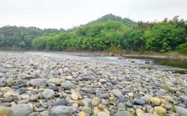 【2020】アユのトモ釣りオススメ河川:長良川 例年の傾向は?