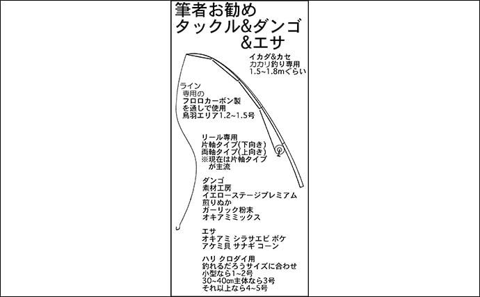 【2020初夏】カカリ釣りクロダイ初心者入門 タックル・エサ・釣り方