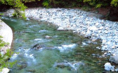 【2020】アユのトモ釣りオススメ河川:道志川 代表的な釣り場10選