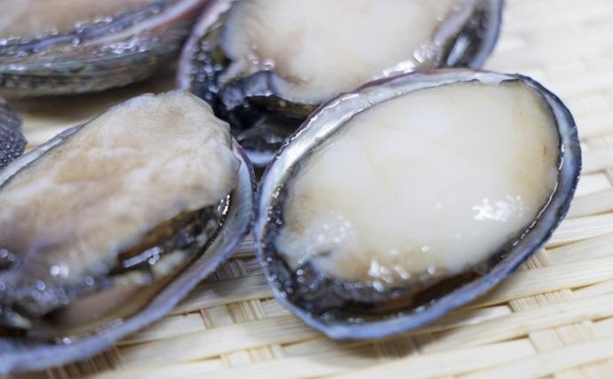 【西日本編】5月に旬を迎える海の幸4選 明石タコならぬ「麦わらタコ」?