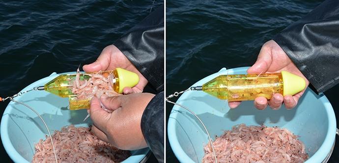 ファン待望の『ワンタッチ缶』FLサイズで東京湾コマセマダイ釣りを攻略