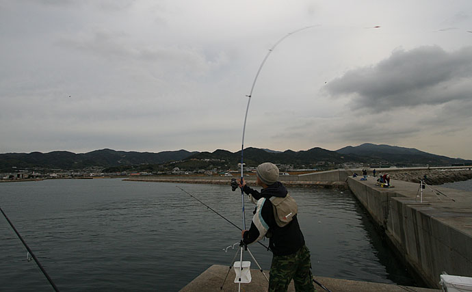 釣りの大敵は『風』? 知っておきたい陸っぱりでの対処法5選