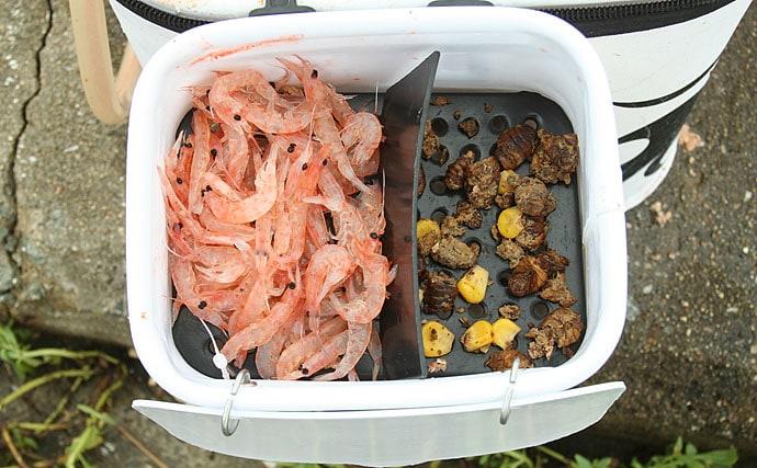 あると便利な釣行グッズ:エサ箱 釣りスタイルに合った様々な種類を紹介