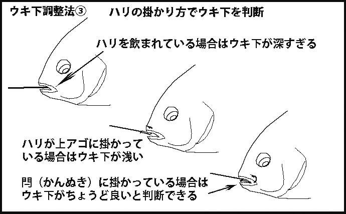 初夏の波止グレ釣りの釣果を左右する『ウキ下』調整法3パターン