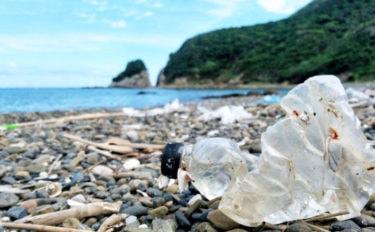 『マイクロプラスチック』って何が問題なの? 根本的な解決法は未定